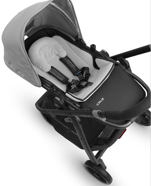 Uppababy Cruz 2017 Gregory Review Stroller With Car Seat Combo